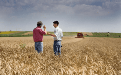 What is an Eminent Domain Attorney?