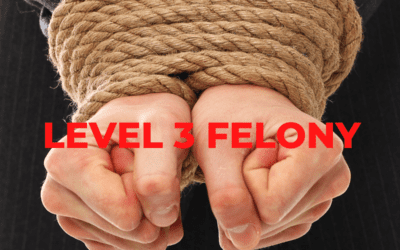Level 3 Felony in Indiana
